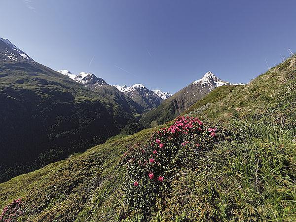 High-alpine hut hike in the Ötztal