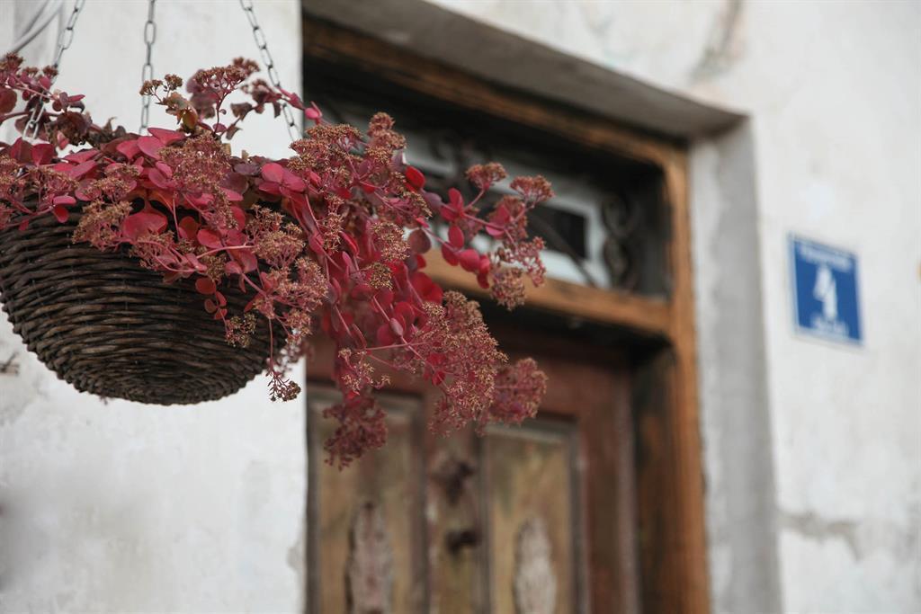 Buxgarten, Ferienhof Ferienwohnung